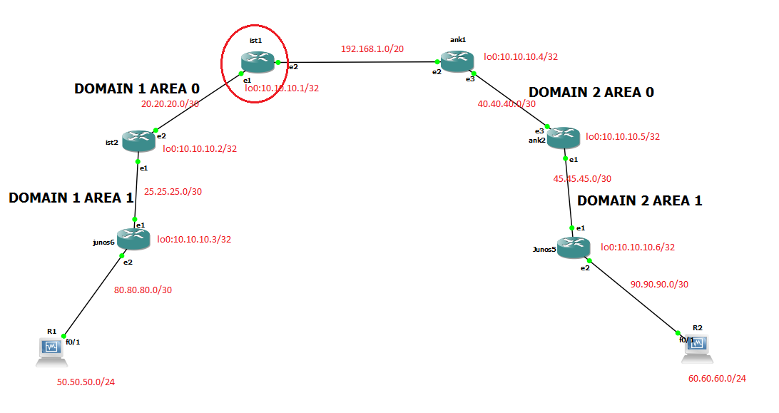 Different OSPF Domains